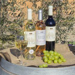 Apéritifs et vins de Provence